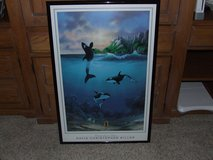Picture-Whales by David Christopher Miller in Oswego, Illinois