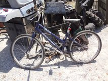 "Raleigh SC Auto 16"" Bicycle in Fort Campbell, Kentucky"