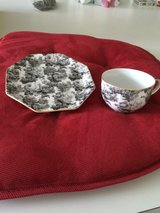 tea cup & saucer black rose in Naperville, Illinois
