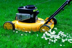 Lawn & Yard Service, Trash hauling & Cleaning Service Call 01521-4065222 in Ramstein, Germany