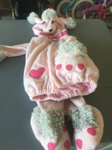 Fi-fi poodle custume size 2t/3t in Camp Lejeune, North Carolina