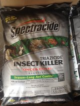 Spectracide Insect Killer in Alamogordo, New Mexico