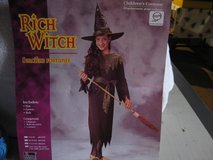 youth Halloween costume rich witch in Orland Park, Illinois