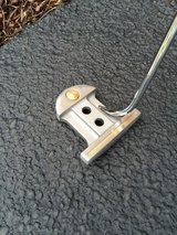 golf putter in Bolingbrook, Illinois