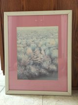 Pink Framed Scenic Picture in Elizabethtown, Kentucky