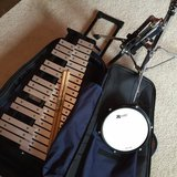 Xylophone for school band in Kingwood, Texas