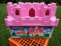 Girls Mega Blocks Palace in Naperville, Illinois