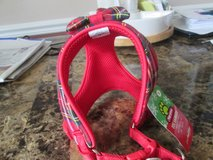 brand new pet harness in Chicago, Illinois