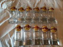 VARIOUS HARD ROCK CAFE SHOT GLASSES in Lakenheath, UK