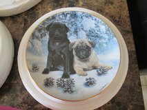 Danbury mint collectable plates in Naperville, Illinois