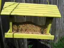 Bird feeder in Alvin, Texas