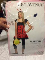 lady bug costume. (junior sz. m/l) in Pleasant View, Tennessee