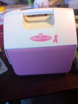 Pink Playmate cooler in Batavia, Illinois