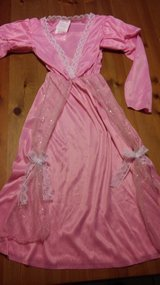 Fairy Tale princess costume in Kingwood, Texas