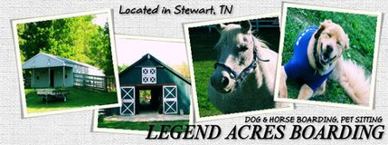 Full Service Inclusive Horse Boarding Military Discount in Fort Campbell, Kentucky