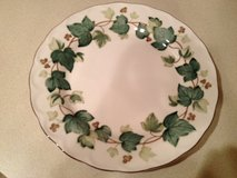 DISHES - 8 place settings of all pieces plus serving pieces IVY pattern by Nikko in DeKalb, Illinois