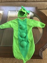 Sweet pea costume in Sandwich, Illinois
