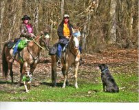 *** Looking for a place to trail ride/drive your horse??? *** in Camp Lejeune, North Carolina