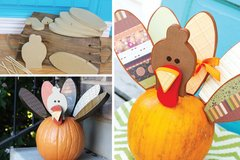 Naked wood turkey kit for pumpkin in bookoo, US