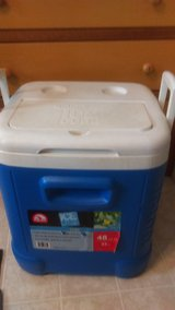 Igloo® Ice Cube™ 48-Quart Cooler in Houston, Texas