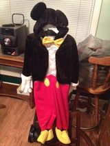 Mickey mouse costume in Clarksville, Tennessee