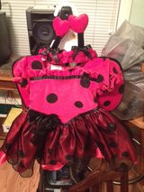 Lady Bug Costume in Clarksville, Tennessee