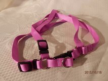 Brand New Harness  Size M in Naperville, Illinois