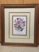 Framed Botanical Prints (2) in Houston, Texas