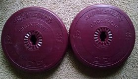 44 pounds in weightlifting plates for barbells - exercise fitness in Bartlett, Illinois