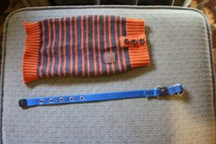 SMALL DOG SWEATER AND COLLAR GOOD CONDITION in Joliet, Illinois