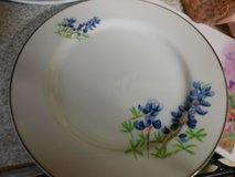 Reduced Price - Vintage Bluebonnet China in Houston, Texas
