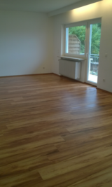 PCS HOUSE AND GENERAL CLEAN UP in Wiesbaden, GE