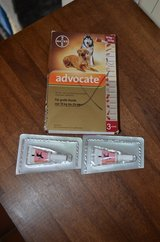 Advocate Flea, Tick and Worm Treatment in Ramstein, Germany