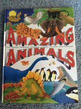 Amazing Animals kids book in Naperville, Illinois