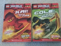 Ninjago Books in Joliet, Illinois