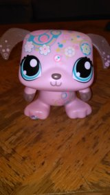 Littlest Pet Shop in Yucca Valley, California