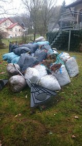 YARD CLEAN UP/LAWN MOW/HEDGE TRIMMING/JUNK REMOVAL in Ramstein, Germany
