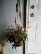 Hanging plant in St. Charles, Illinois