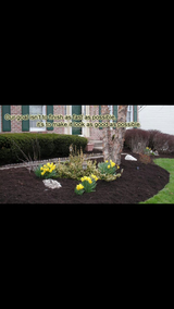 Better Lawns & Landscaping in Conroe, Texas