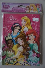 Disney Princess Journal in Bolingbrook, Illinois