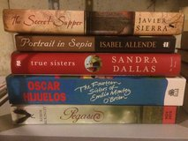 Lot novels / books brand new in Naperville, Illinois