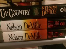 Nelson Demille mystery/ action books in Naperville, Illinois