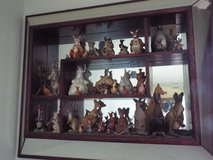 Kangaroo collection, yes Kangaroo in Alamogordo, New Mexico