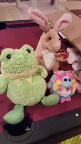 Stuffed animals in Shorewood, Illinois