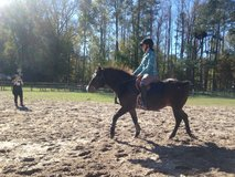 Horse Back Riding Lessons in Camp Lejeune, North Carolina