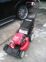 lawn mower in Hinesville, Georgia