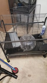 Guinea pig cage with ball in Conroe, Texas