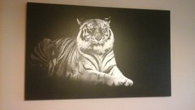 Great Big Canvas Art - large black/white tiger canvas print in Conroe, Texas