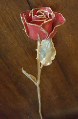 Rose dipped in 24K gold in Camp Pendleton, California
