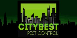 Book Online For Bed Bug Control Service And Get Flat 5% Off in Philadelphia, Pennsylvania
